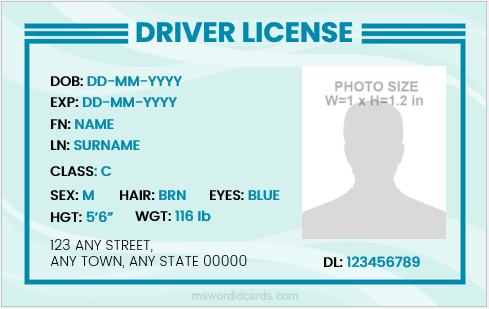 Driver license card sample